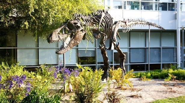 T-Rex pod siedzibą Google